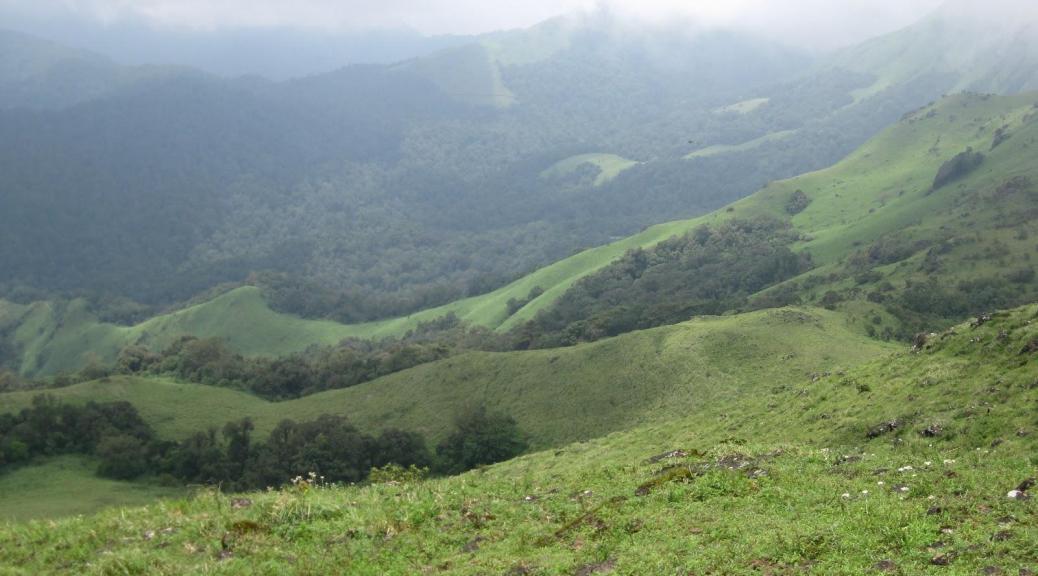 in The lap of Nature, Western Ghats in Karnataka