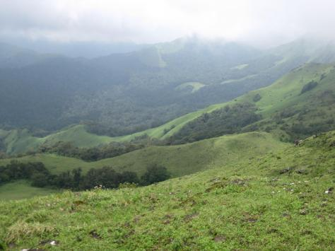 The Bramhagiri hills