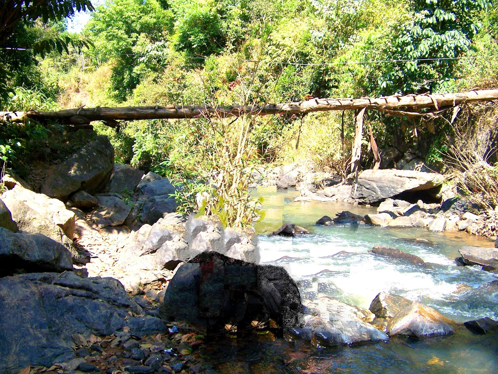 The Bridge across the brook