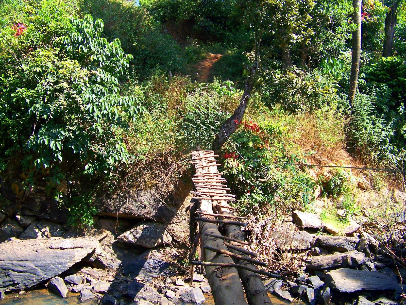 Walking over the wooden bridge