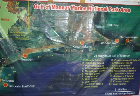 Gulf of Mannar marine national park area