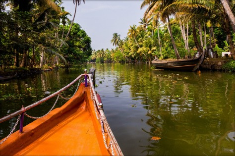 The Shikara cruise in the narrow canals of Alleppey