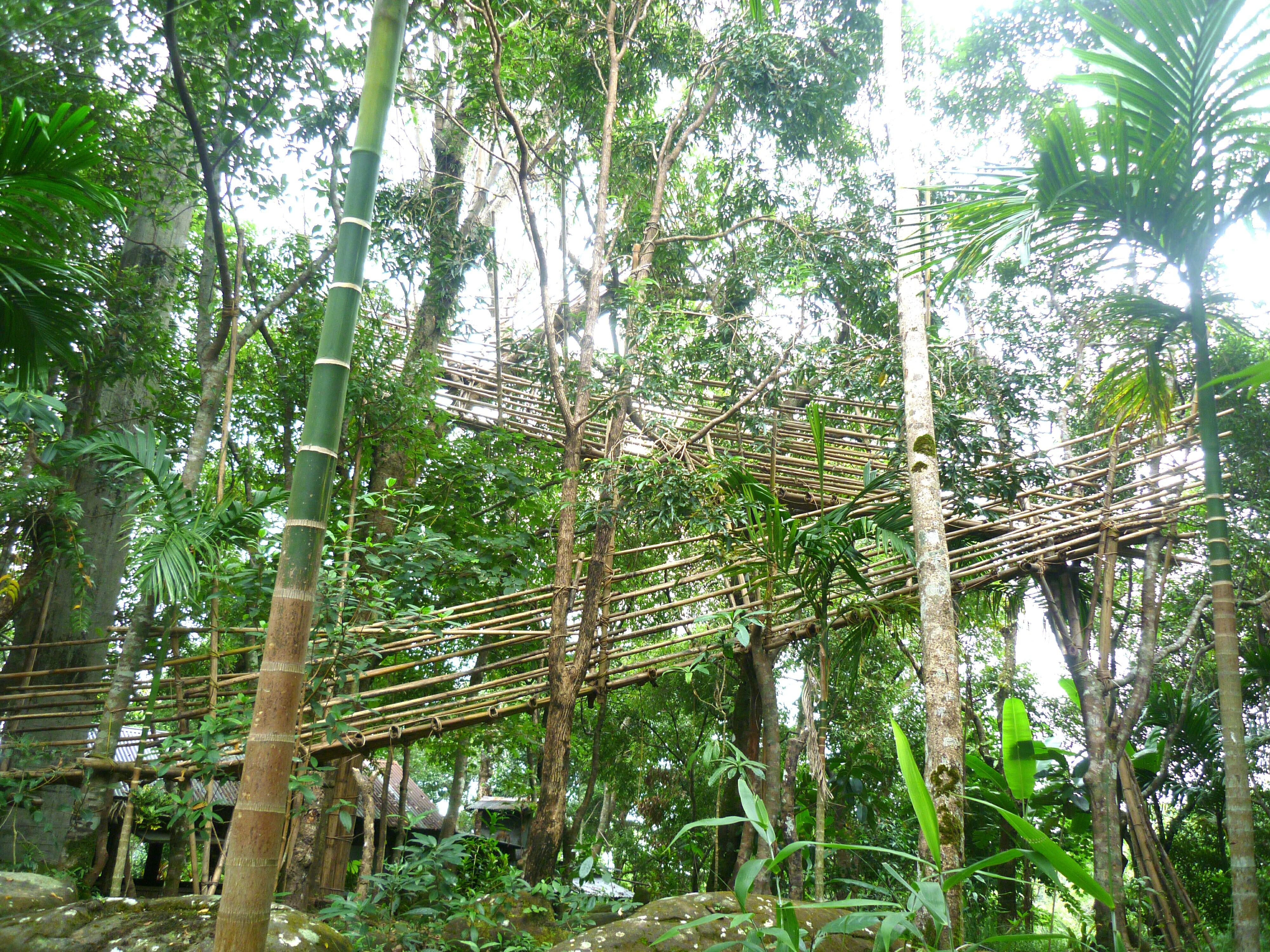 The Bangladesh view point at Mawlynnong