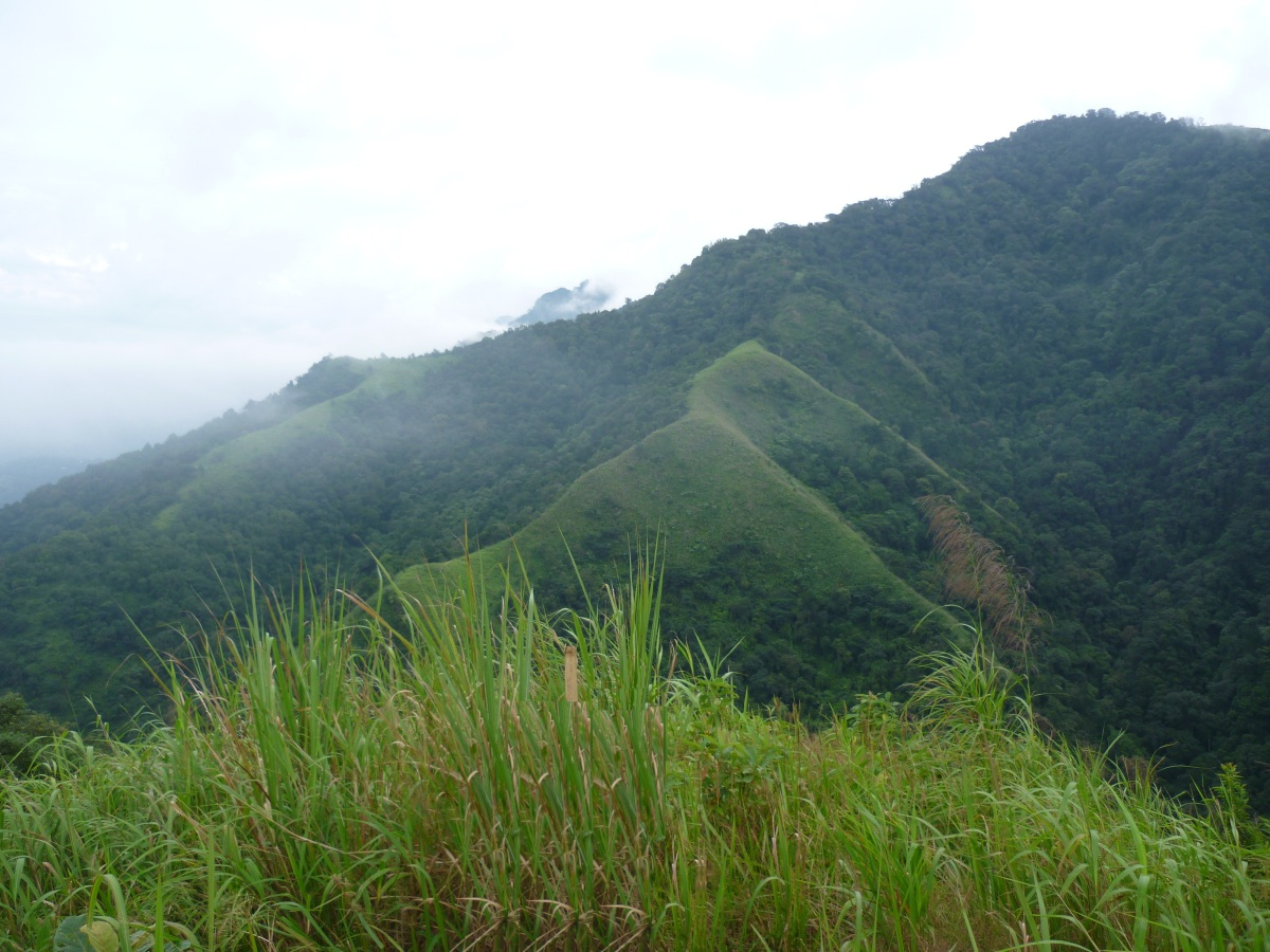 Hiking up Assam's highest point- Hapeo peak